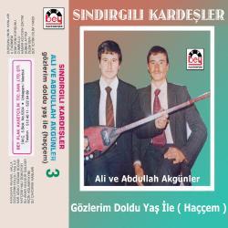 SINDIRGILI KARDEŞLER.3