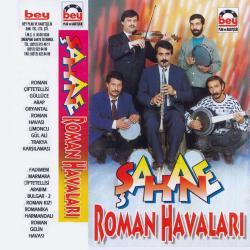 ŞAHANE ROMAN HAVALARI