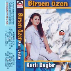 BİRSEN ÖZEN-Karlı Dağlar