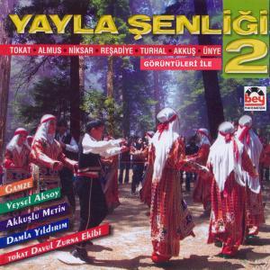 YAYLA ŞENLİĞİ-2