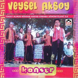 VEYSEL AKSOY-Konser